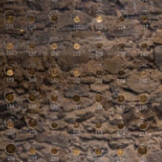 La collezione di monete, Museo del Mare, Capoliveri